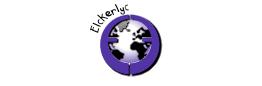 MZH Elckerlyc International